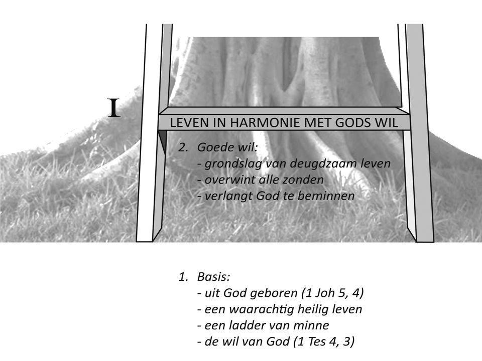 *Tweede en derde trede: niet meer het beeld van de ladder *Maar de goede boom met twee goede vruchten *Geestelijk leven is immers: geen opeenvolging van mathematisch vast-gelegde afstanden maar een organisch levend geheel zoals een boom: het een groeit uit het ander *Zo worden wij volkomen en groeien we uit tot rijpe mensen
