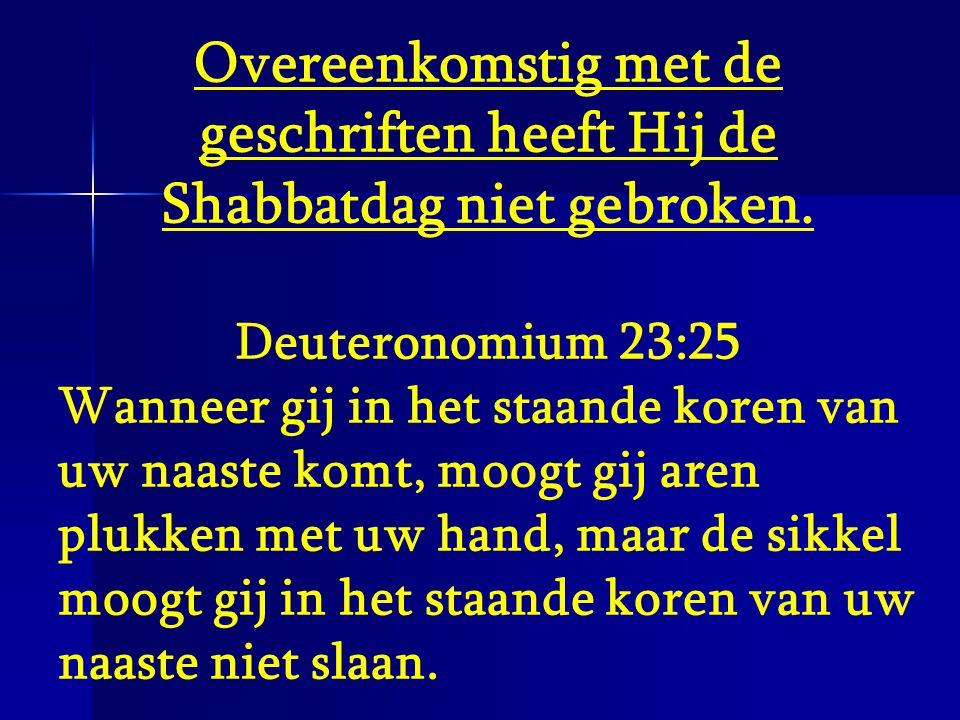 Overeenkomstig met de geschriften heeft Hij de Shabbatdag niet gebroken. Deuteronomium 23:25 Wanneer gij in het staande koren van uw naaste komt, moog