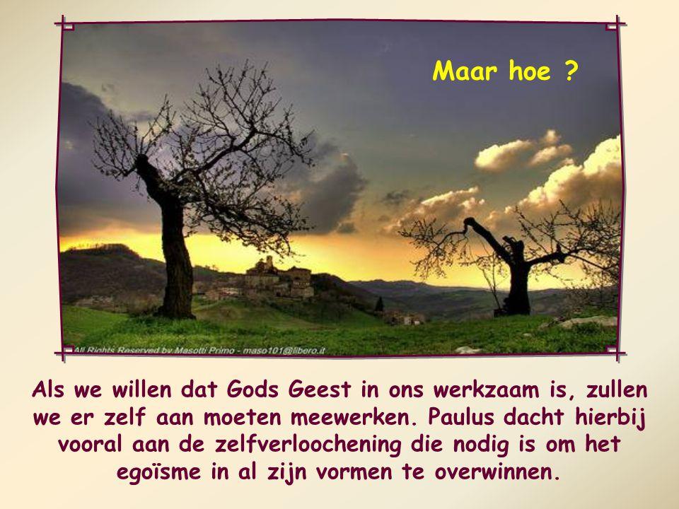 Wie door de Geest wordt geleid zal iedere dag opnieuw de strijd moeten aanbinden om alle verkeerde neigingen te overwinnen en te leven volgens het geloof.