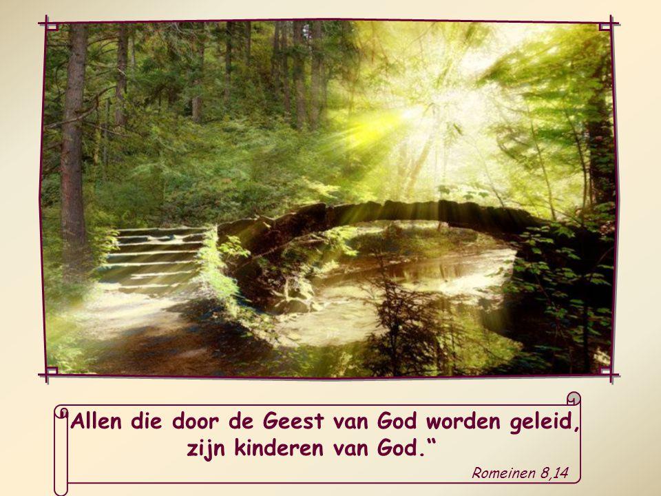 Heel ons leven wordt bezield door een nieuw principe, door een nieuwe geest, de Geest van God zelf.