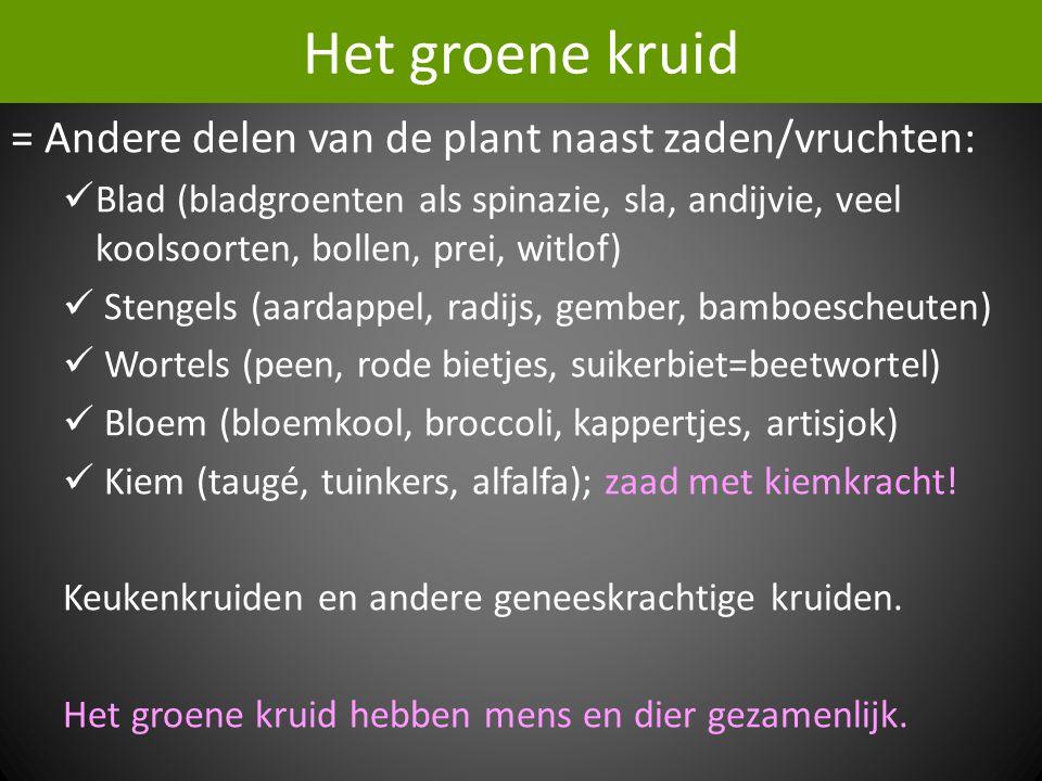 Het groene kruid = Andere delen van de plant naast zaden/vruchten:  Blad (bladgroenten als spinazie, sla, andijvie, veel koolsoorten, bollen, prei, witlof)  Stengels (aardappel, radijs, gember, bamboescheuten)  Wortels (peen, rode bietjes, suikerbiet=beetwortel)  Bloem (bloemkool, broccoli, kappertjes, artisjok)  Kiem (taugé, tuinkers, alfalfa); zaad met kiemkracht.