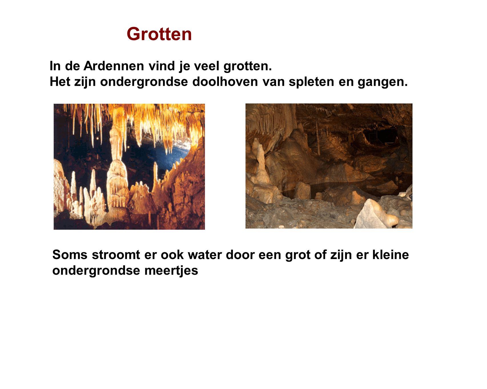 Grotten In de Ardennen vind je veel grotten.Het zijn ondergrondse doolhoven van spleten en gangen.