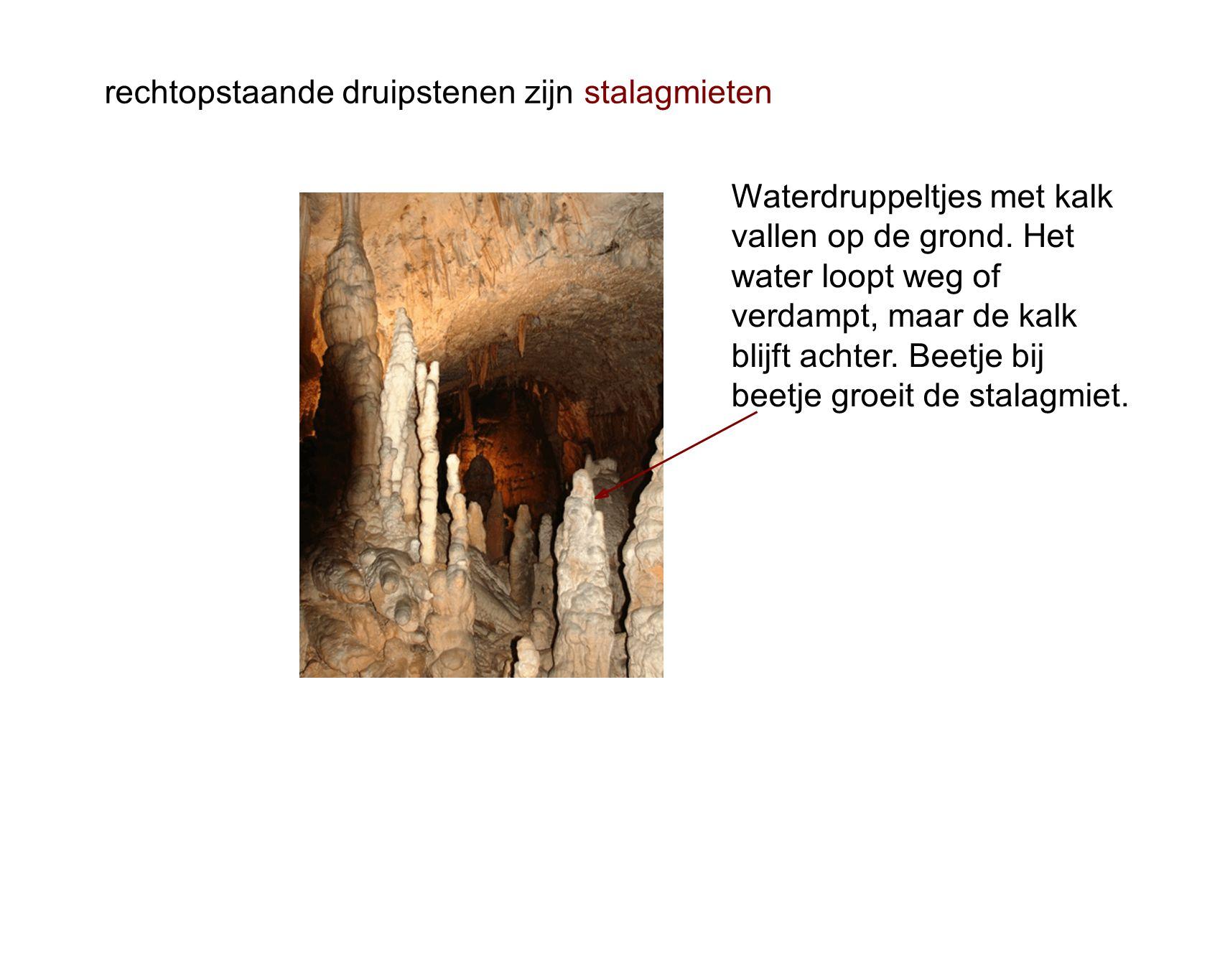 rechtopstaande druipstenen zijn stalagmieten Waterdruppeltjes met kalk vallen op de grond.