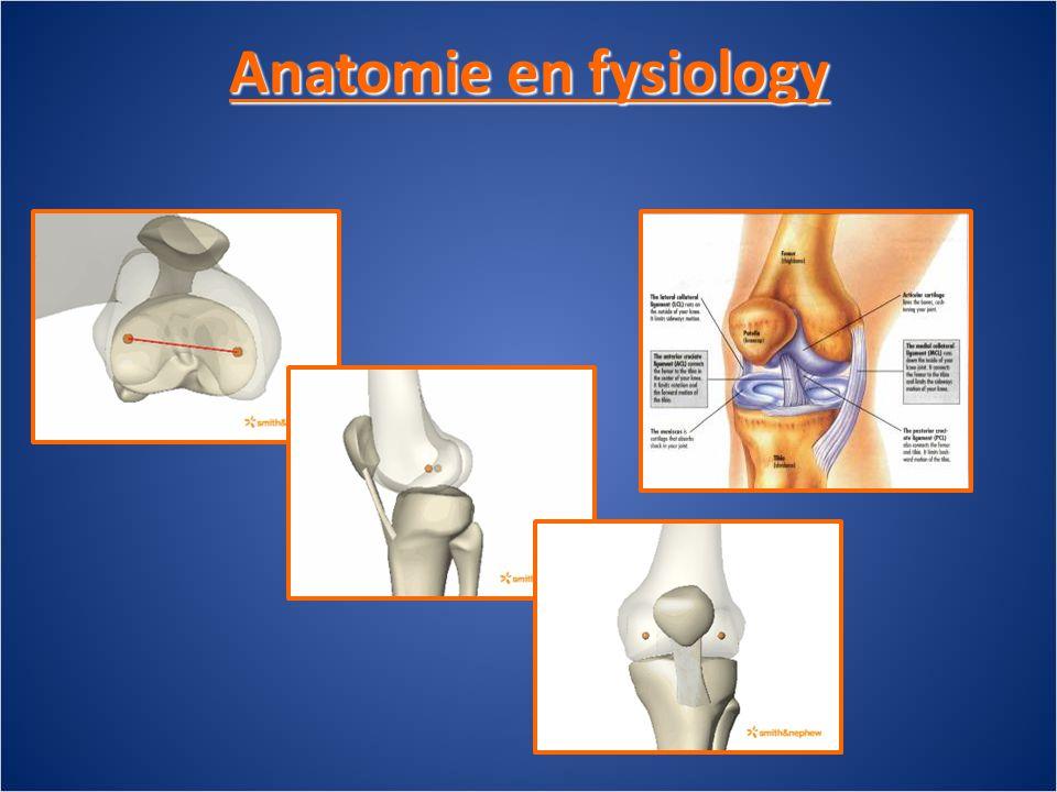 Anatomie en fysiology