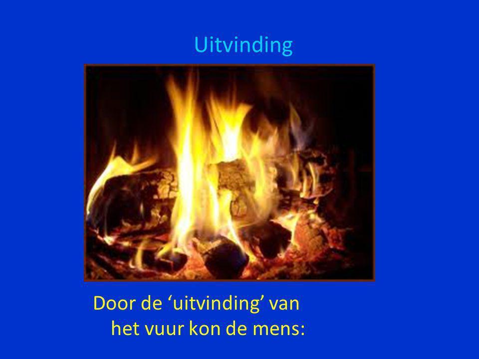•Zich warmen •Licht maken •Wilde dieren op afstand houden •Brons gieten en (later) ijzer smeden •Eten maken •en ….