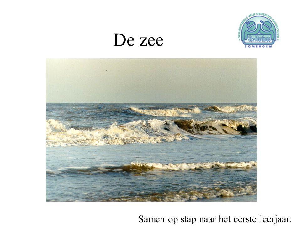 De zee Samen op stap naar het eerste leerjaar.