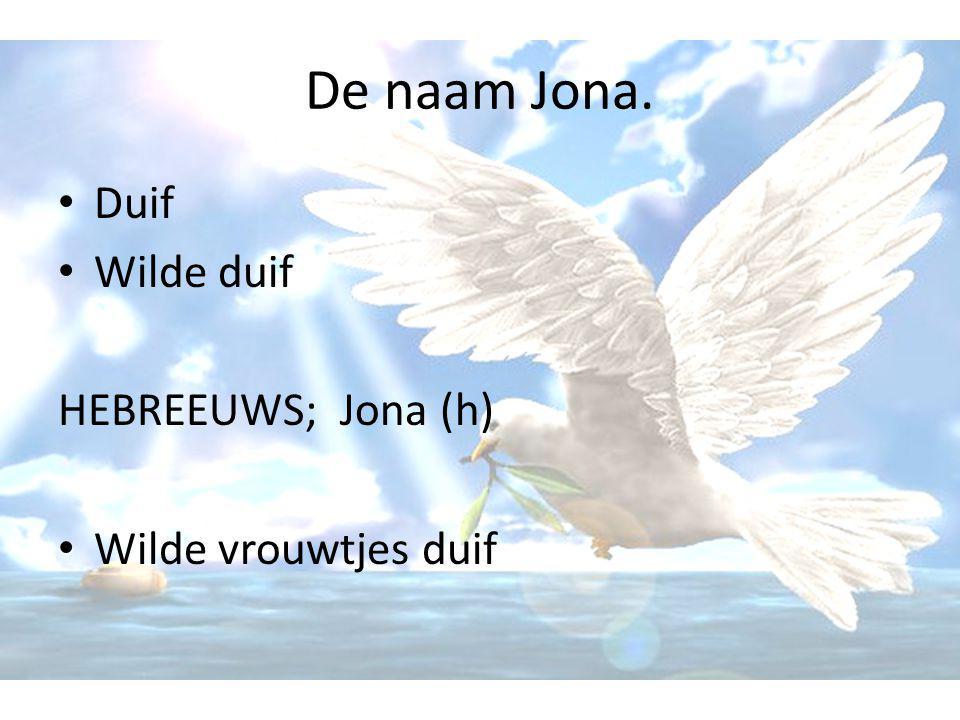 De naam Jona. • Duif • Wilde duif HEBREEUWS; Jona (h) • Wilde vrouwtjes duif