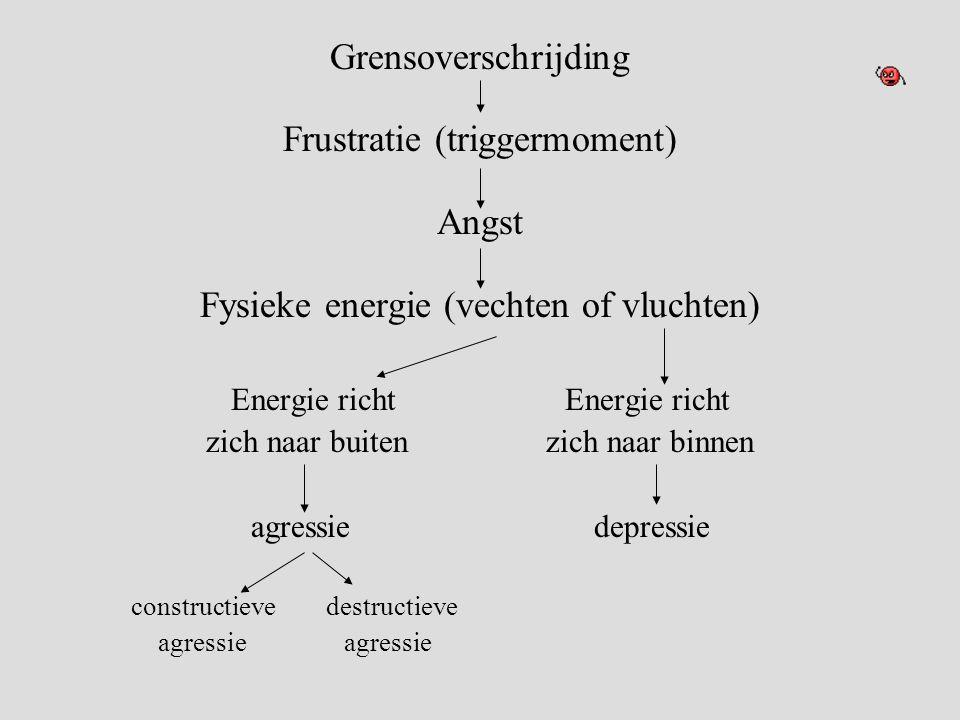 Grensoverschrijding Frustratie (triggermoment) Angst Fysieke energie (vechten of vluchten) Energie richt zich naar buiten zich naar binnen agressie depressie constructieve destructieve agressie agressie