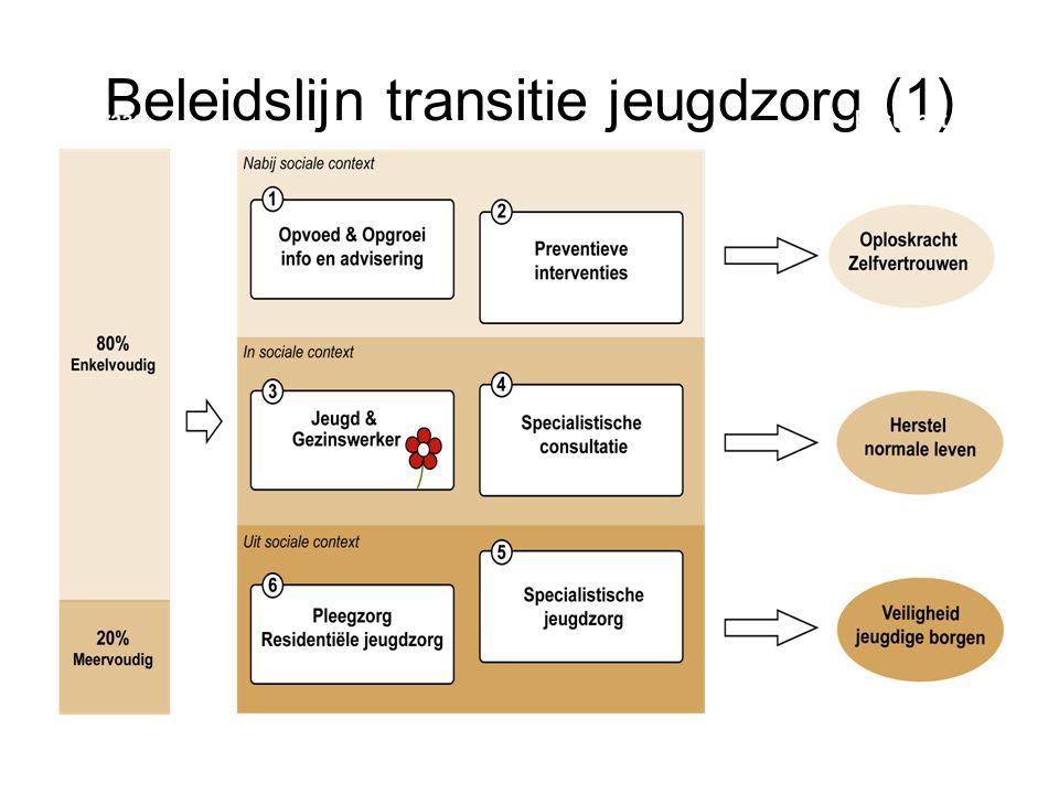 Beleidslijn (2): dienstverleningsstructuur
