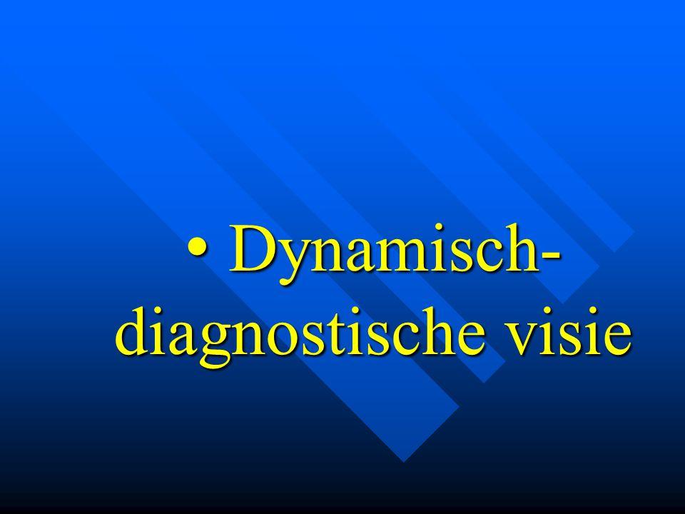 • Dynamisch- diagnostische visie
