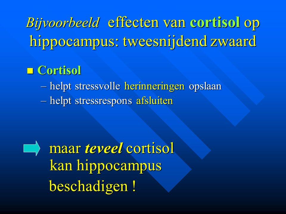 Bijvoorbeeld effecten van cortisol op hippocampus: tweesnijdend zwaard  Cortisol –helpt stressvolle herinneringen opslaan –helpt stressrespons afslui