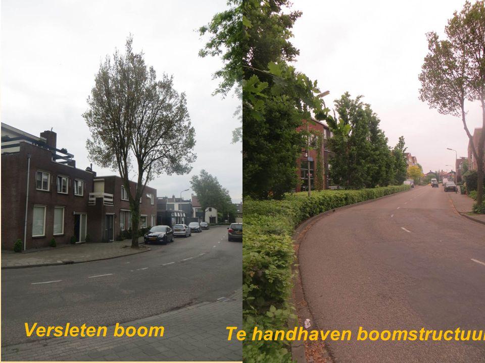 Versleten boom Te handhaven boomstructuur