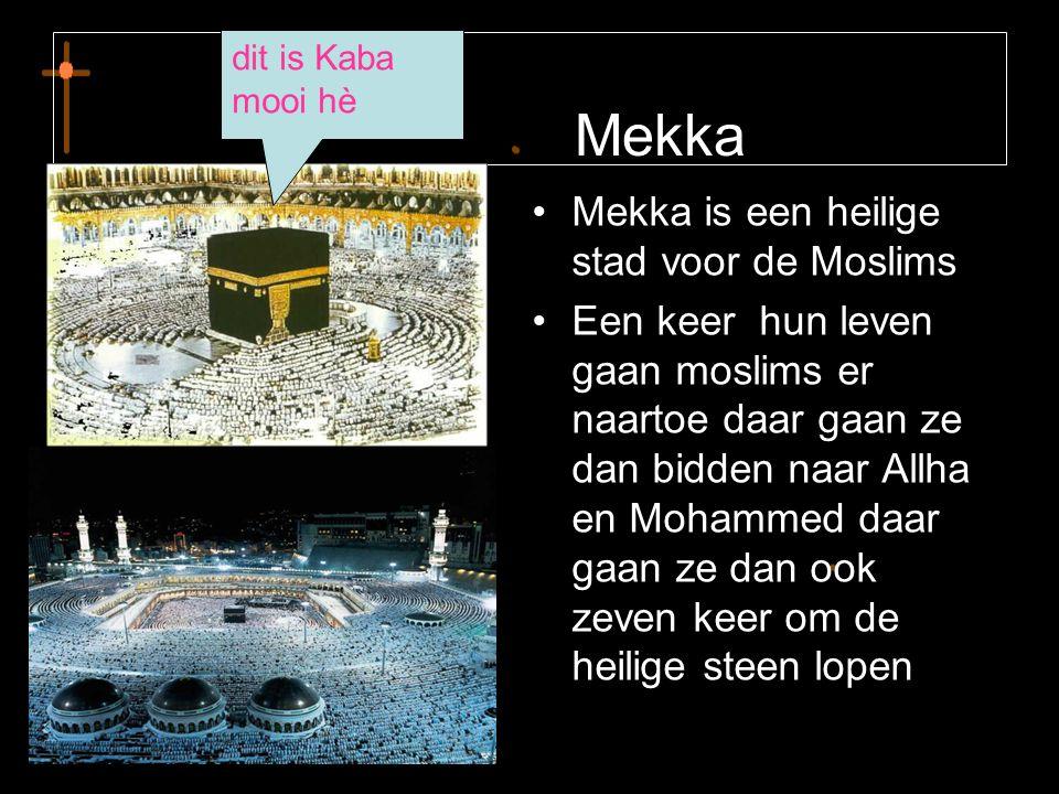 Mekka •M•Mekka is een heilige stad voor de Moslims •E•Een keer hun leven gaan moslims er naartoe daar gaan ze dan bidden naar Allha en Mohammed daar g