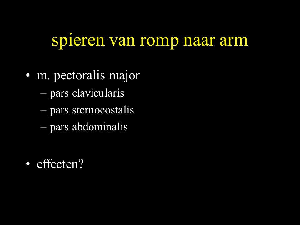 spieren van romp naar arm •m. pectoralis major –pars clavicularis –pars sternocostalis –pars abdominalis •effecten?