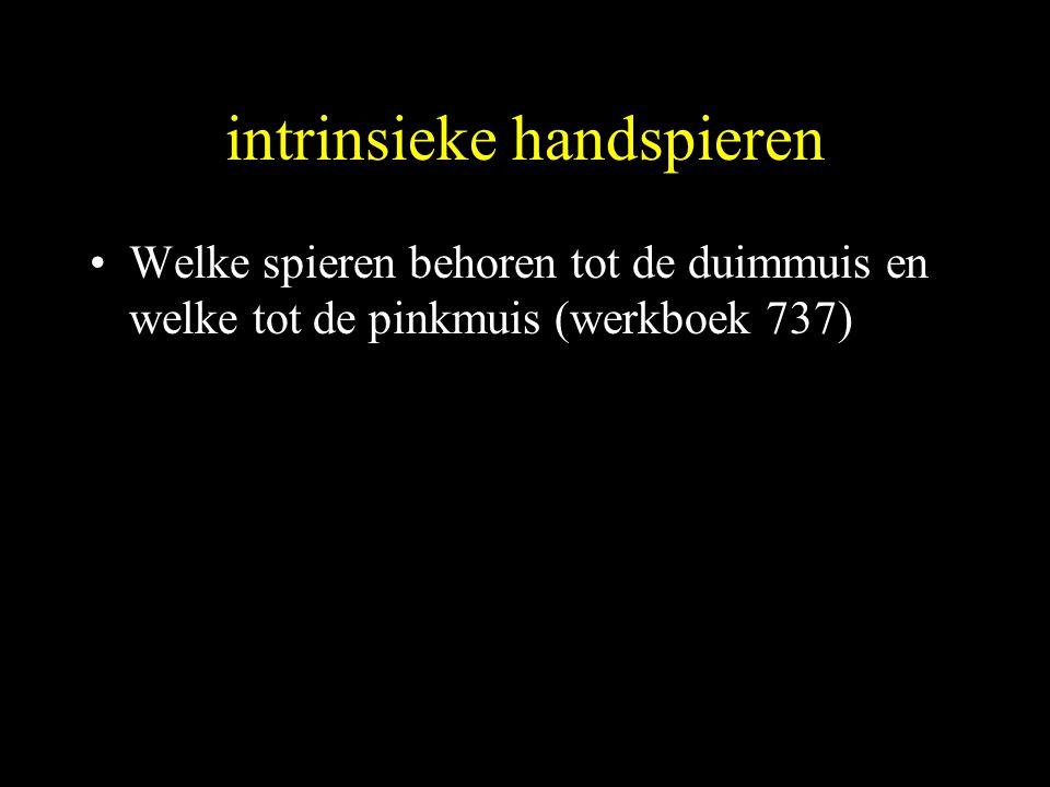 intrinsieke handspieren •Welke spieren behoren tot de duimmuis en welke tot de pinkmuis (werkboek 737)