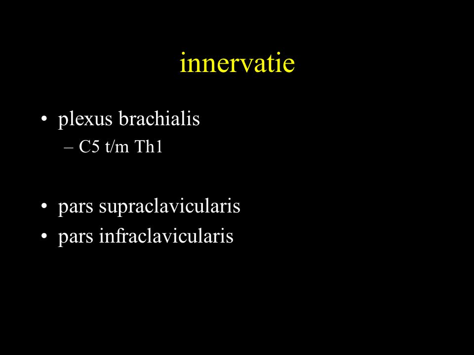 innervatie •plexus brachialis –C5 t/m Th1 •pars supraclavicularis •pars infraclavicularis