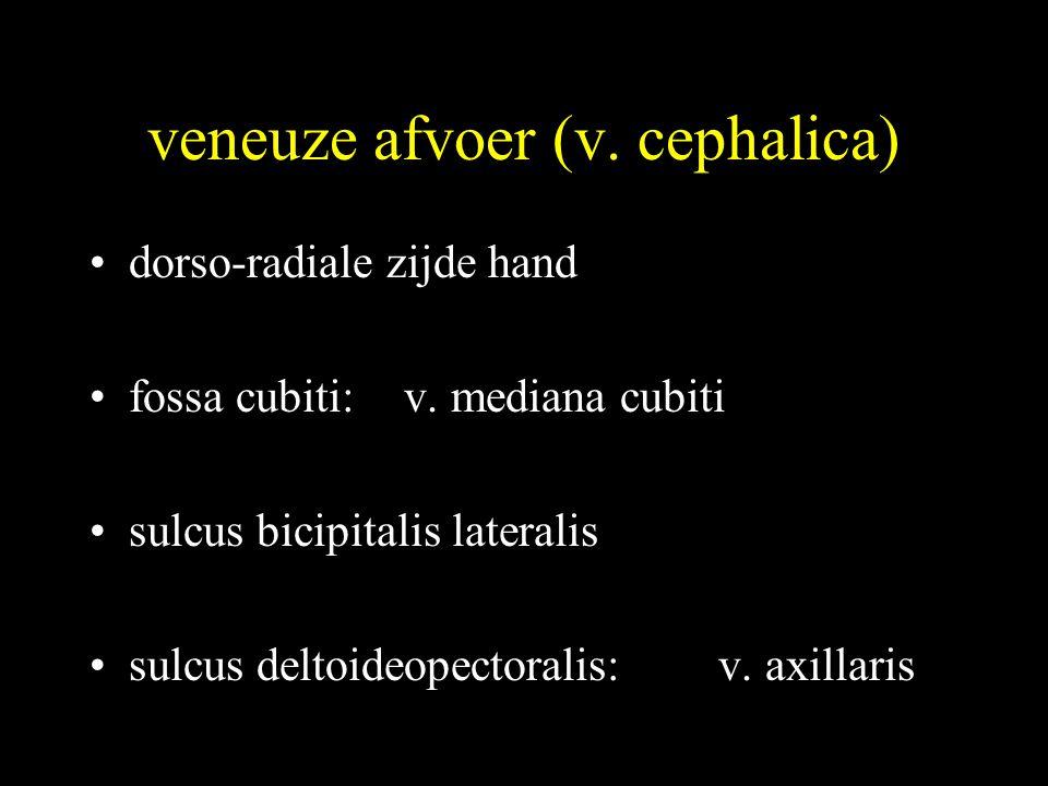 veneuze afvoer (v. cephalica) •dorso-radiale zijde hand •fossa cubiti:v. mediana cubiti •sulcus bicipitalis lateralis •sulcus deltoideopectoralis:v. a