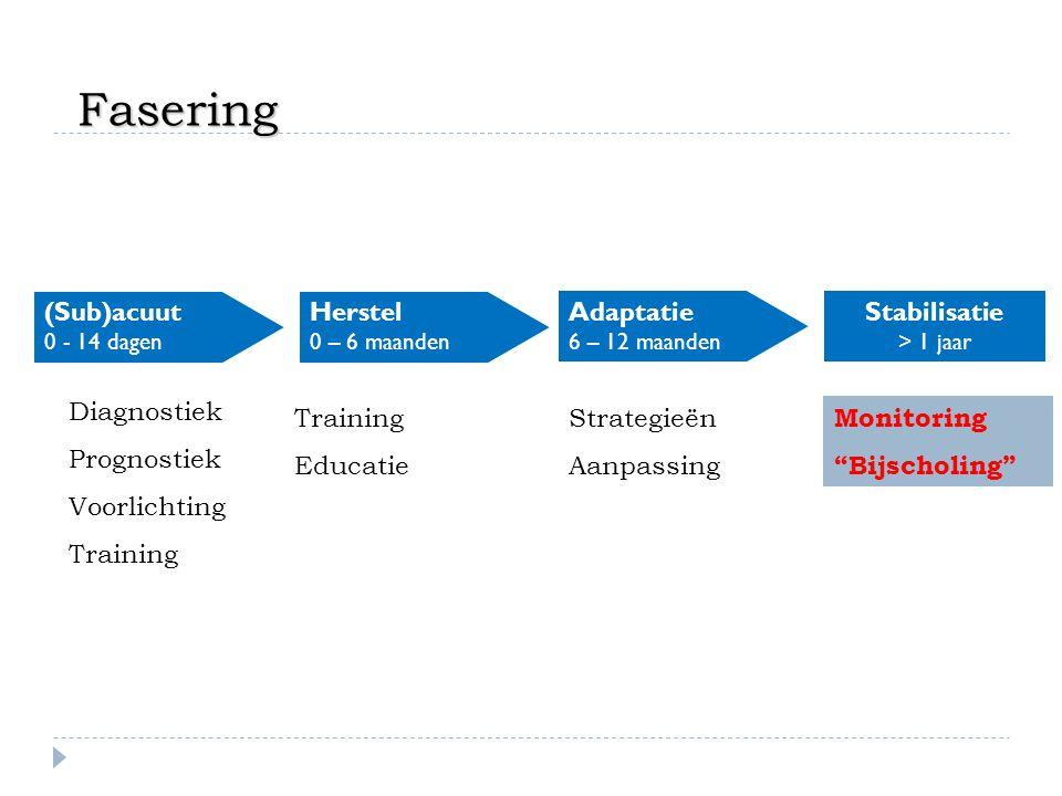 (Sub)acuut 0 - 14 dagen Herstel 0 – 6 maanden Adaptatie 6 – 12 maanden Stabilisatie > 1 jaar Diagnostiek Prognostiek Voorlichting Training Educatie St