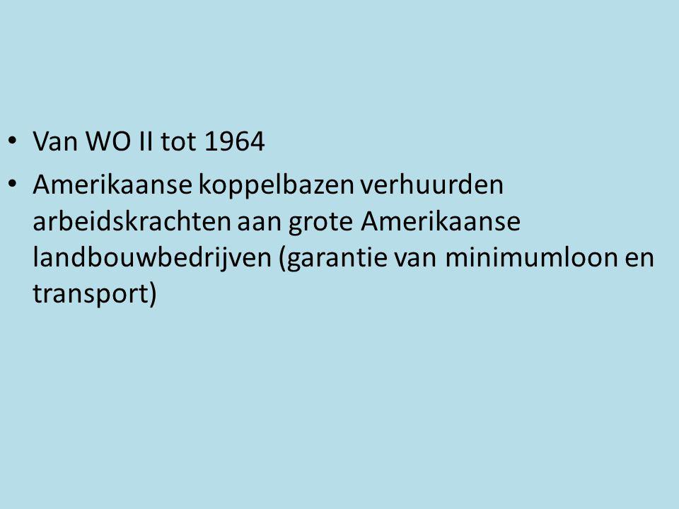• Van WO II tot 1964 • Amerikaanse koppelbazen verhuurden arbeidskrachten aan grote Amerikaanse landbouwbedrijven (garantie van minimumloon en transpo