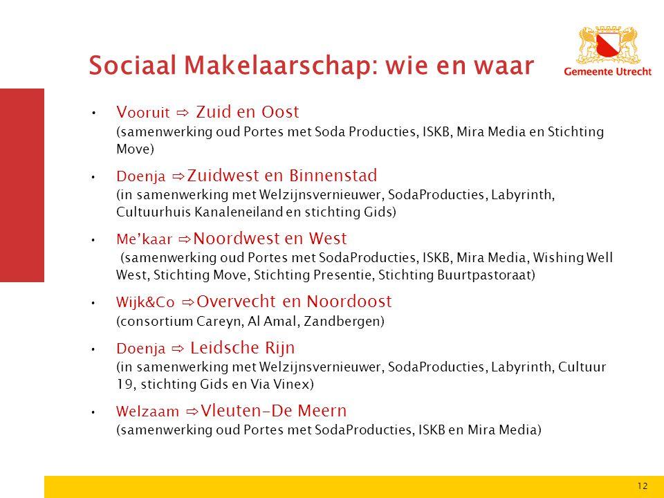 12 Sociaal Makelaarschap: wie en waar •V ooruit ⇨ Zuid en Oost (samenwerking oud Portes met Soda Producties, ISKB, Mira Media en Stichting Move) •Doen