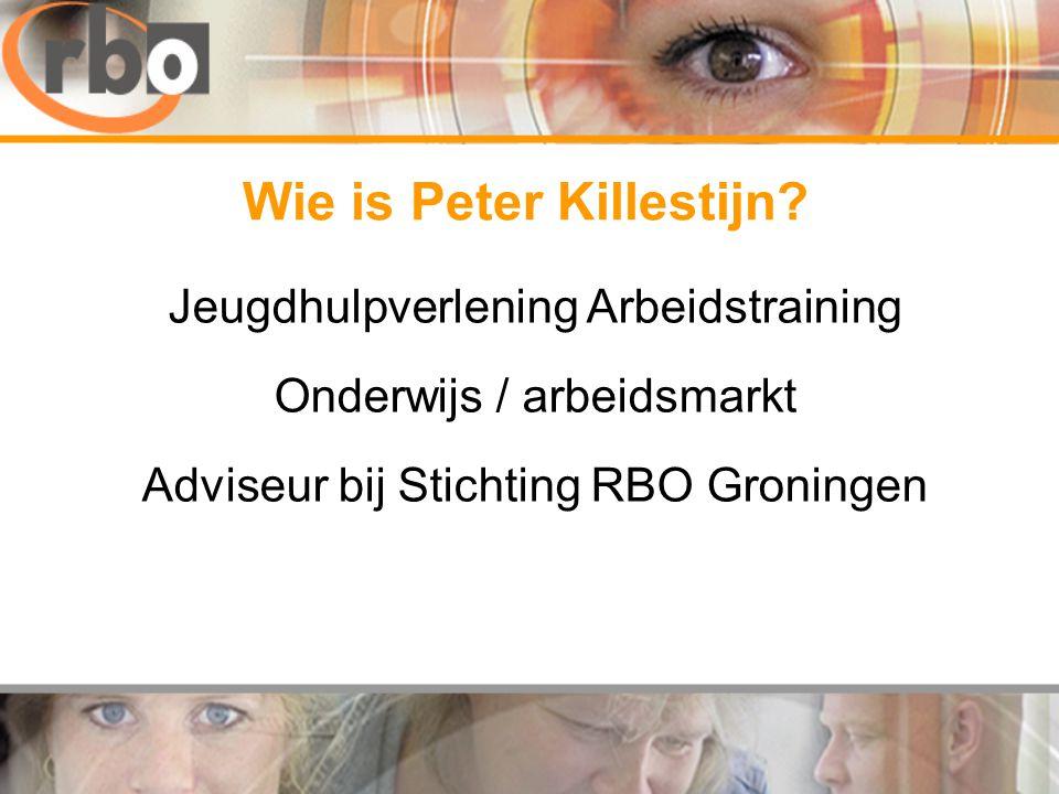 Jeugdhulpverlening Arbeidstraining Onderwijs / arbeidsmarkt Adviseur bij Stichting RBO Groningen Wie is Peter Killestijn?