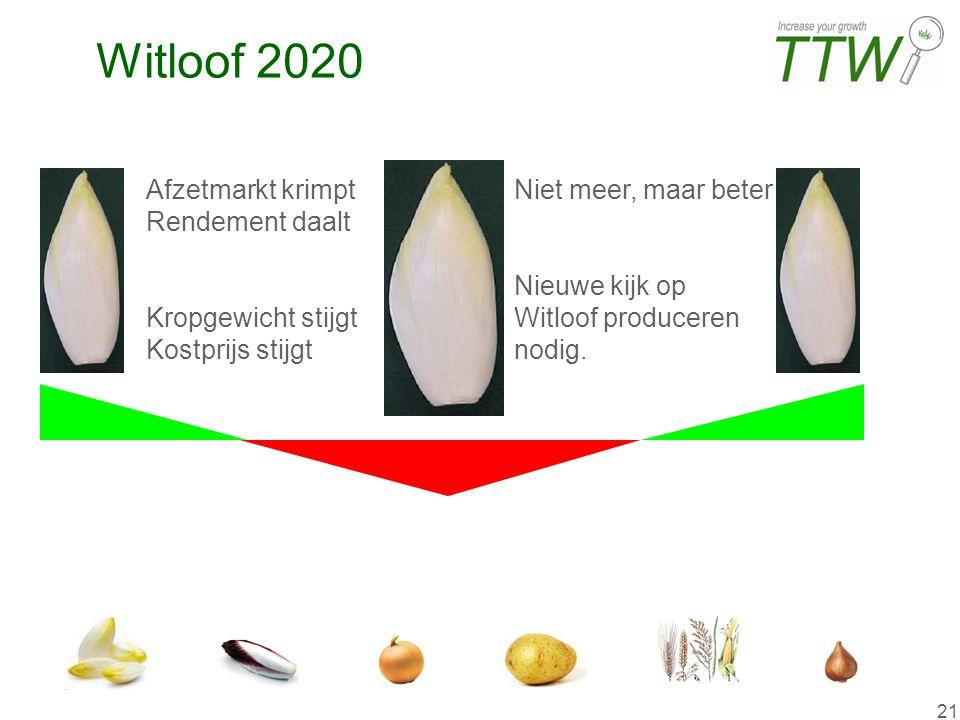21 Witloof 2020Witloof 2020 Witloof 2020 Afzetmarkt krimpt Rendement daalt Kropgewicht stijgt Kostprijs stijgt Niet meer, maar beter Nieuwe kijk op Wi