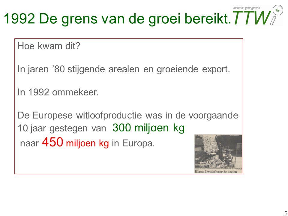 5 1992 De grens van de groei bereikt. Hoe kwam dit? In jaren '80 stijgende arealen en groeiende export. In 1992 ommekeer. De Europese witloofproductie