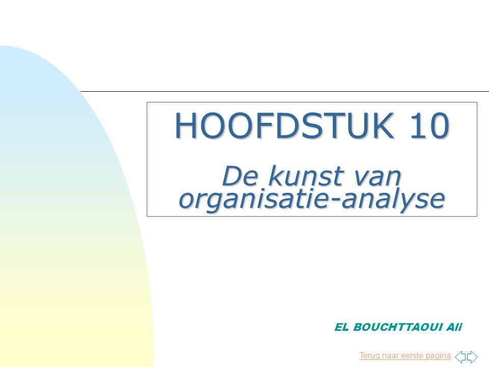 Terug naar eerste pagina HOOFDSTUK 10 De kunst van organisatie-analyse EL BOUCHTTAOUI Ali
