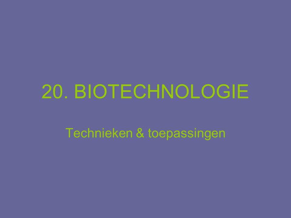 20. BIOTECHNOLOGIE Technieken & toepassingen
