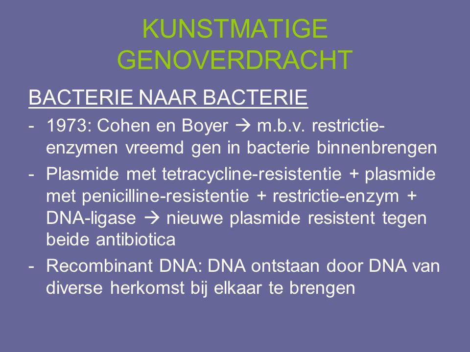 BACTERIE NAAR BACTERIE -1973: Cohen en Boyer  m.b.v. restrictie- enzymen vreemd gen in bacterie binnenbrengen -Plasmide met tetracycline-resistentie