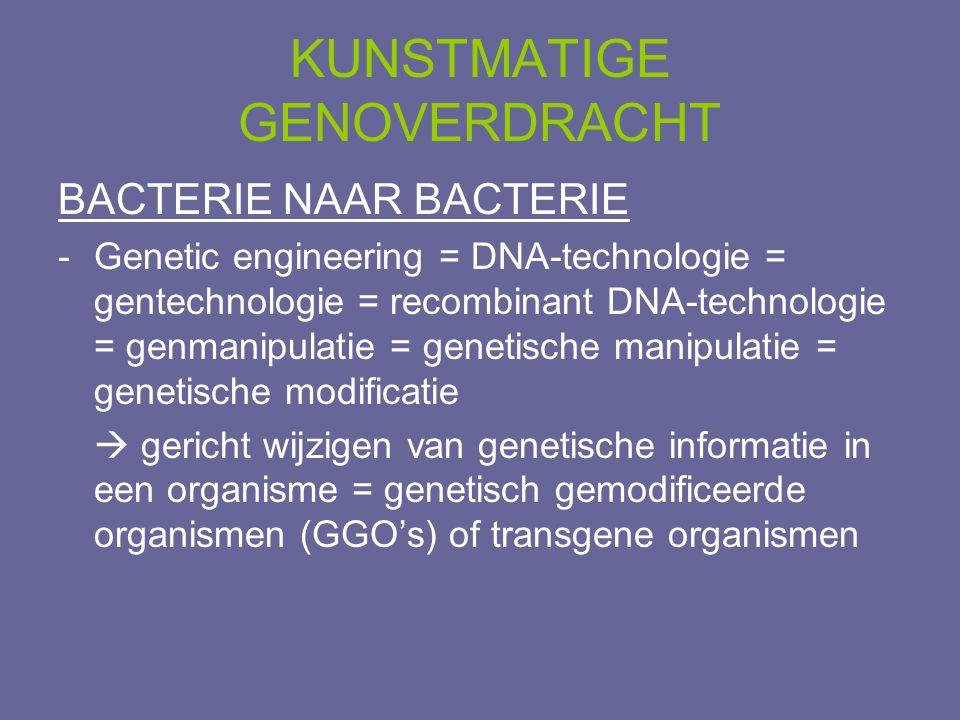 BACTERIE NAAR BACTERIE -Genetic engineering = DNA-technologie = gentechnologie = recombinant DNA-technologie = genmanipulatie = genetische manipulatie