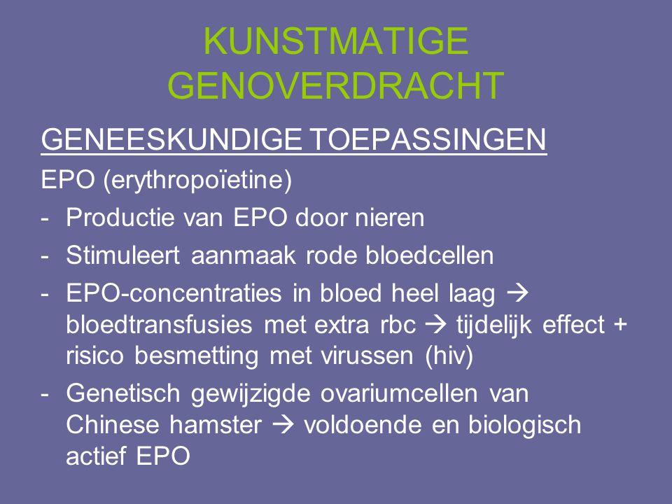 KUNSTMATIGE GENOVERDRACHT GENEESKUNDIGE TOEPASSINGEN EPO (erythropoïetine) -Productie van EPO door nieren -Stimuleert aanmaak rode bloedcellen -EPO-co