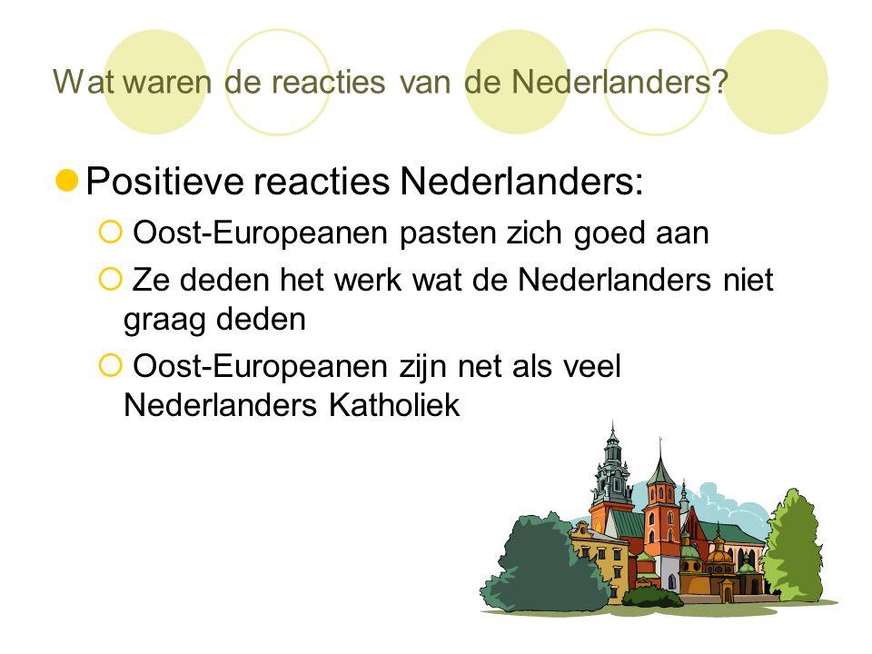 Wat waren de reacties van de Nederlanders?  Positieve reacties Nederlanders:  Oost-Europeanen pasten zich goed aan  Ze deden het werk wat de Nederl