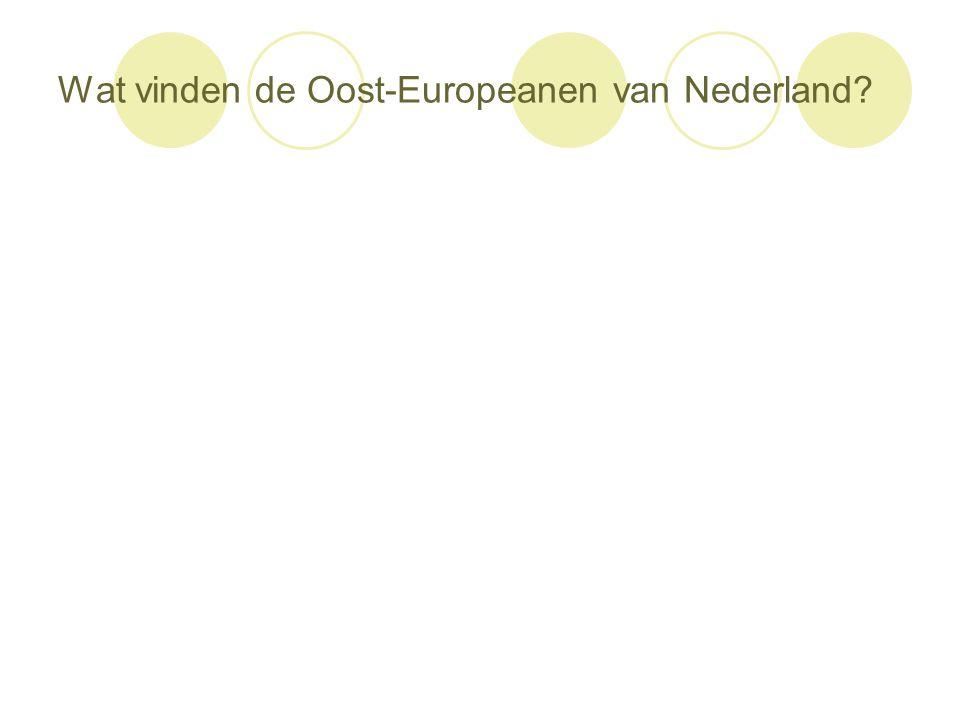Wat vinden de Oost-Europeanen van Nederland?