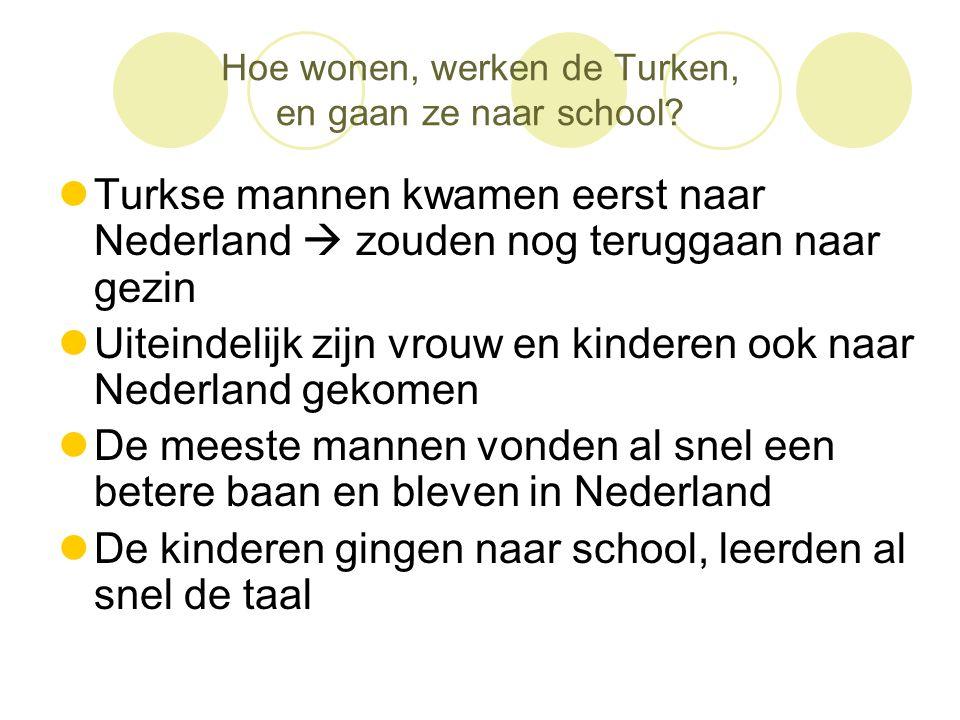 Hoe wonen, werken de Turken, en gaan ze naar school?  Turkse mannen kwamen eerst naar Nederland  zouden nog teruggaan naar gezin  Uiteindelijk zijn