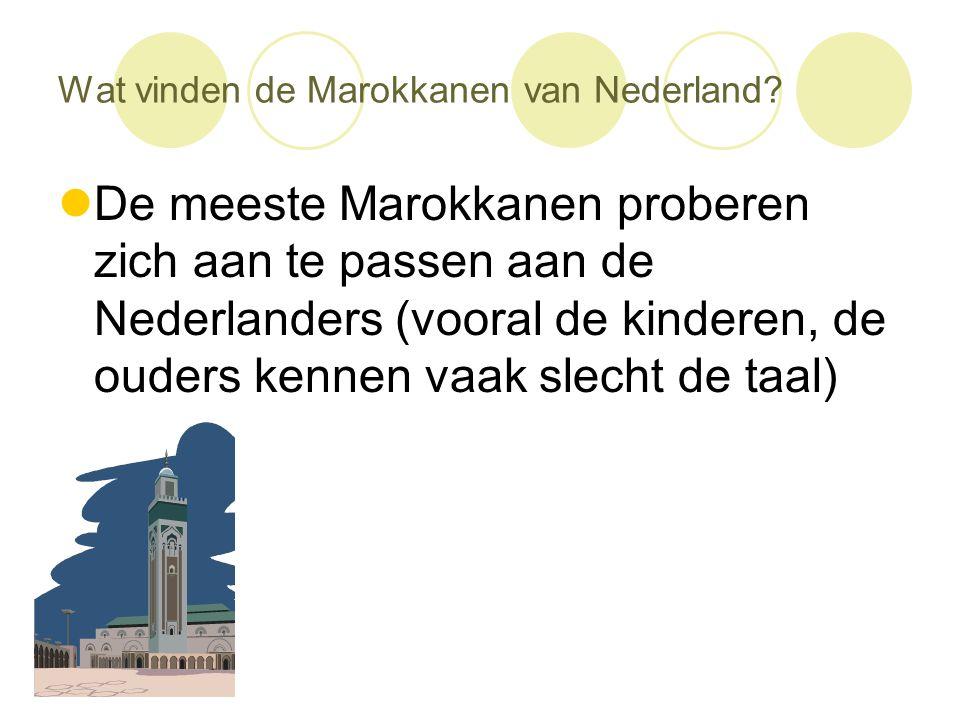 Wat vinden de Marokkanen van Nederland?  De meeste Marokkanen proberen zich aan te passen aan de Nederlanders (vooral de kinderen, de ouders kennen v