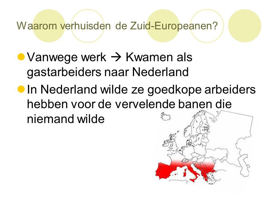 Waarom verhuisden de Zuid-Europeanen?  Vanwege werk  Kwamen als gastarbeiders naar Nederland  In Nederland wilde ze goedkope arbeiders hebben voor
