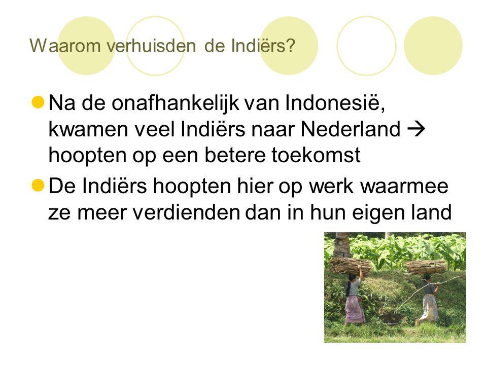 Waarom verhuisden de Indiërs?  Na de onafhankelijk van Indonesië, kwamen veel Indiërs naar Nederland  hoopten op een betere toekomst  De Indiërs ho