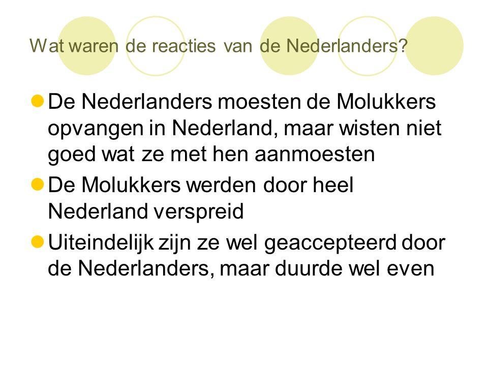 Wat waren de reacties van de Nederlanders?  De Nederlanders moesten de Molukkers opvangen in Nederland, maar wisten niet goed wat ze met hen aanmoest