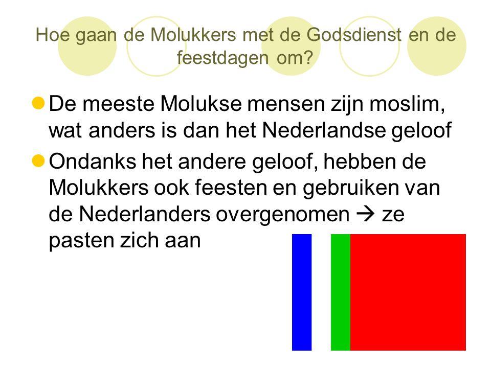 Hoe gaan de Molukkers met de Godsdienst en de feestdagen om?  De meeste Molukse mensen zijn moslim, wat anders is dan het Nederlandse geloof  Ondank