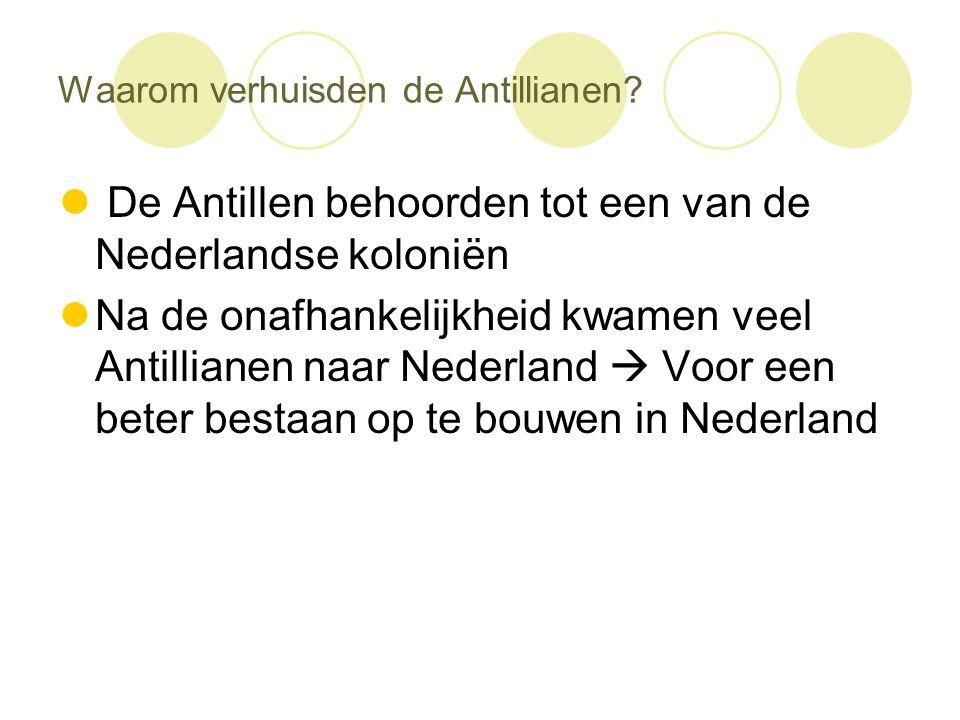 Waarom verhuisden de Antillianen?  De Antillen behoorden tot een van de Nederlandse koloniën  Na de onafhankelijkheid kwamen veel Antillianen naar N