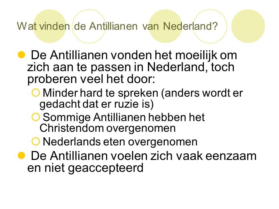 Wat vinden de Antillianen van Nederland?  De Antillianen vonden het moeilijk om zich aan te passen in Nederland, toch proberen veel het door:  Minde