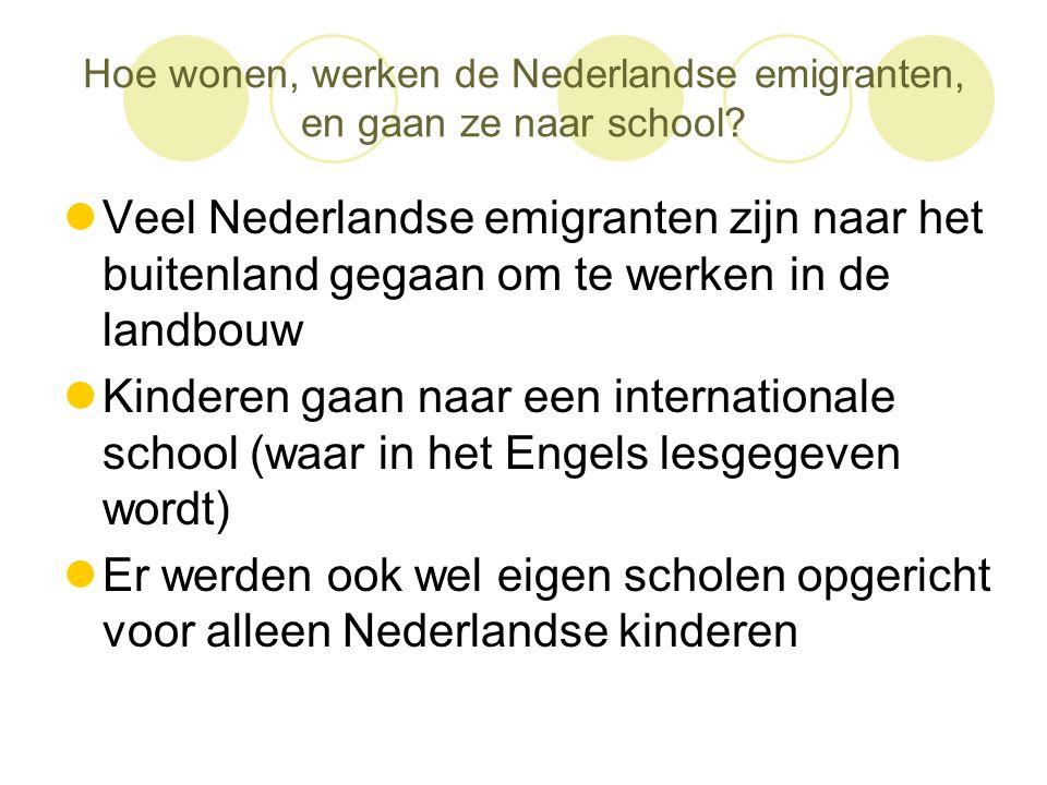 Hoe wonen, werken de Nederlandse emigranten, en gaan ze naar school?  Veel Nederlandse emigranten zijn naar het buitenland gegaan om te werken in de