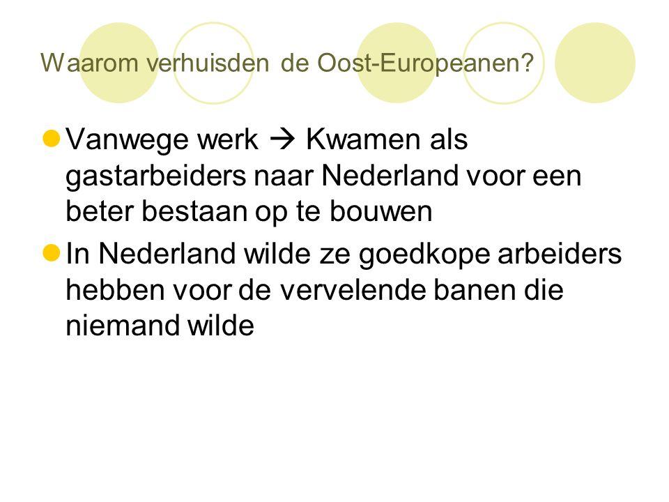 Waarom verhuisden de Oost-Europeanen?  Vanwege werk  Kwamen als gastarbeiders naar Nederland voor een beter bestaan op te bouwen  In Nederland wild