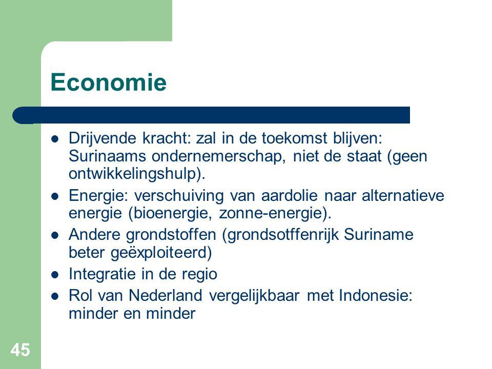 45 Economie  Drijvende kracht: zal in de toekomst blijven: Surinaams ondernemerschap, niet de staat (geen ontwikkelingshulp).  Energie: verschuiving