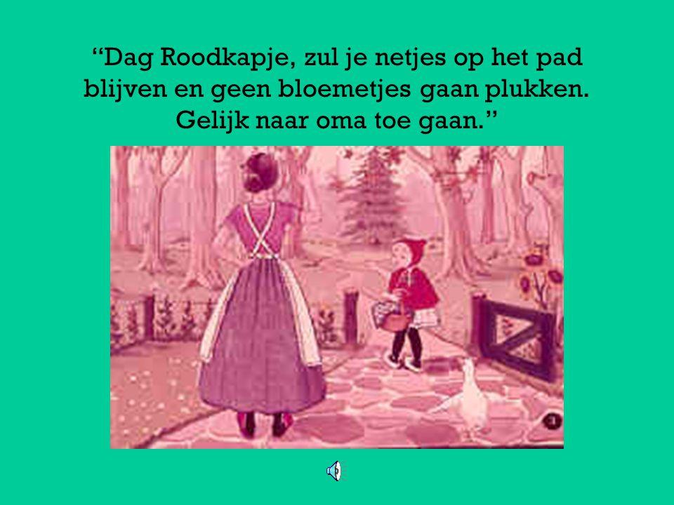De vader en moeder van Roodkapje werden een beetje ongerust toen hun dochtertje nog steeds niet thuis was gekomen.