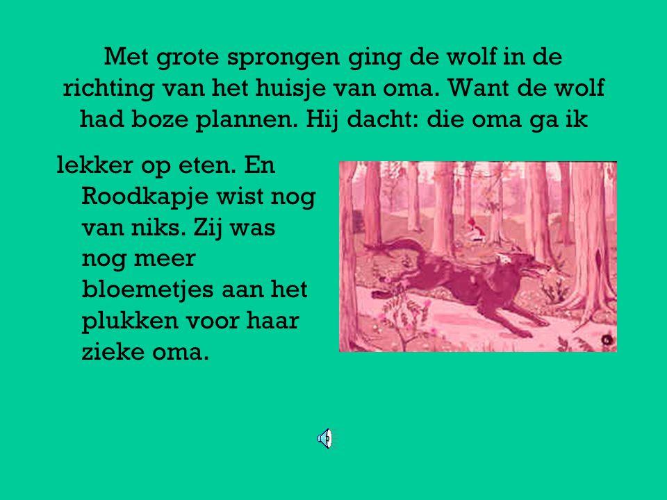 Met grote sprongen ging de wolf in de richting van het huisje van oma.