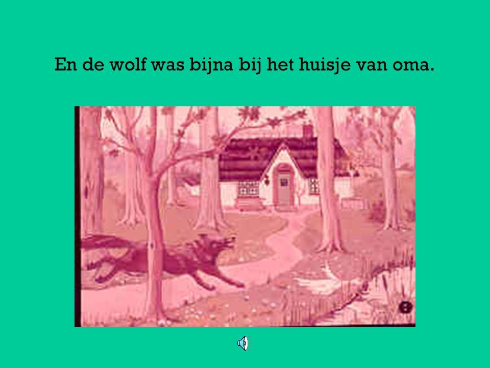 Met grote sprongen ging de wolf in de richting van het huisje van oma. Want de wolf had boze plannen. Hij dacht: die oma ga ik lekker op eten. En Rood