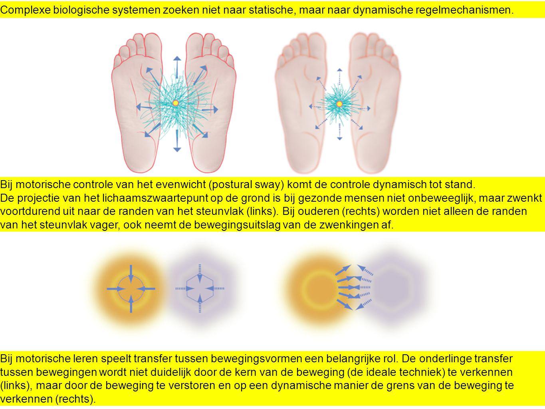 Complexe biologische systemen zoeken niet naar statische, maar naar dynamische regelmechanismen. Bij motorische controle van het evenwicht (postural s