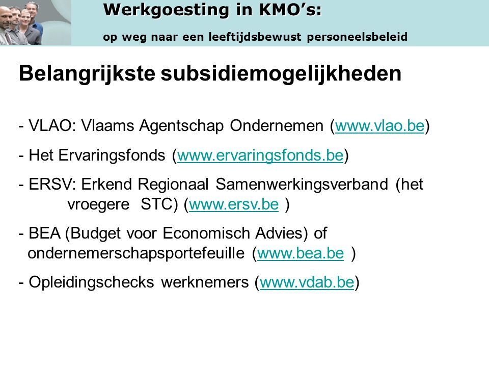 Werkgoesting in KMO's: op weg naar een leeftijdsbewust personeelsbeleid Belangrijkste subsidiemogelijkheden - VLAO: Vlaams Agentschap Ondernemen (www.
